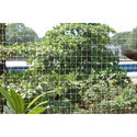 Bird Protection Netting Service, Frequency One Time