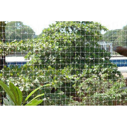 Bird Protection Netting Service