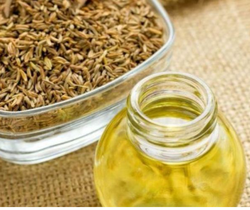 Pure Natural Caraway Oil