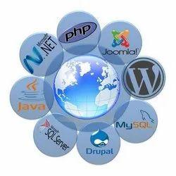 Dynamic Website Development Service, in Pan India