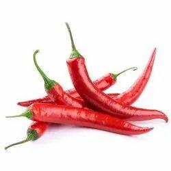 Kashmiri Red Chilli, Pack Size: 15kg