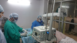 Cataract Surgery Services