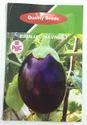 Pbc Brinjal Naneet Seeds