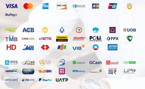IT / Technology Services of Payment Options And Partners Solution