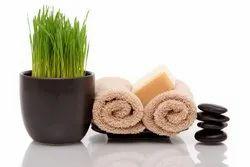 Wheatgrass Soap
