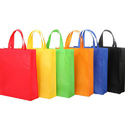 Loop Handle Non Woven Carry Bags