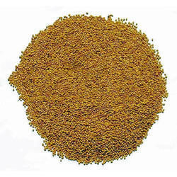 Natural Alfa alfa Lucerne Seed, For Agriculture, Packaging Type: Bag