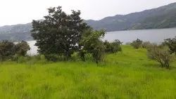 Agricultural Plot, Size/ Area: 17000
