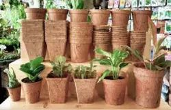 Brown Coconut Pots for Gardening