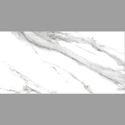 Carrara Statuario PGVT Glossy Tile