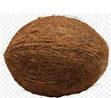Organic Fresh Mature Coconut