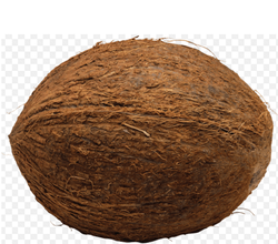Organic Fresh Mature Coconut