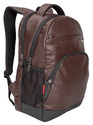 Cosmus Icon Brown Durable 35Litre PU Leather Laptop Backpack
