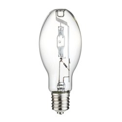 Metal Halide Bulb