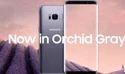 Samsung Galaxy S8-S8 plus