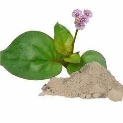 Boerhavia Diffusa Extract