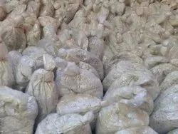FLORIDA Natural Oyster Mushroom Spawns, Packaging Type: Pp, Packaging Size: 4 Inch By 4 Inch