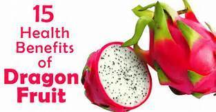 dragon fruit red white shivam agro satara id 11190842473