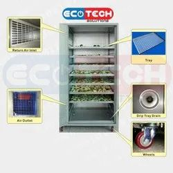 Fruits and Vegetable Dryer