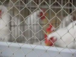 Kambi Veli Chain Link Fencing