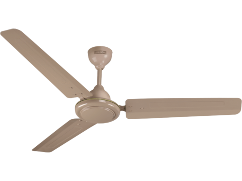 Ceiling Fans Areole Ceiling Fan Havells Wholesale Trader From Nashik