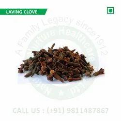 Laving Clove (Syzygium Aromaticum, Laung, Clove Flower, Clove Leaf, Girofle,Lavanga)