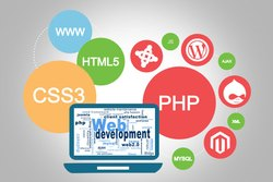 E Commerce Website Designing Training Course Service