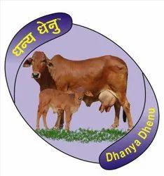 Sahiwal Cow Milk