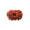 Rudraksha Beads