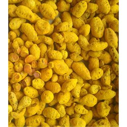 Yellow Double Polished Salem Turmeric Bulbs, for Spices
