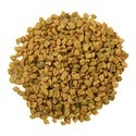 Sprouted Fenugreek Seeds
