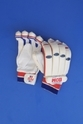 BDM Player's Autograph Cricket Batting Glove