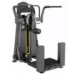 Commercial Fitness Total Hip for Strength