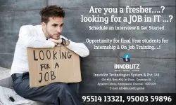 Software Internship Training Program in Chennai