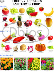 Horticulture Charts