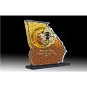 Yellow Acrylic Trophy