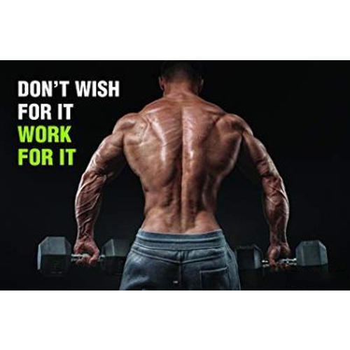 Motivational Gym Quotes Framed Poster At Rs 576 Piece New Delhi
