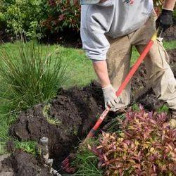 Business/Commercial Irrigation System Installation Service, Sprinkler, 100000