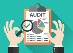 Tax Audit & Company Audit