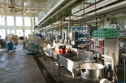 Composite Dairy Plants for Milk Products