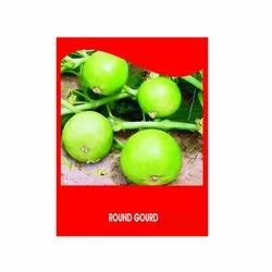White Green Icon Round Gourd Raj-715, For Agriculture, Packaging Size: 100gm
