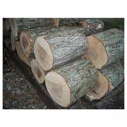Hard Firewood