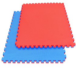 Kung Fu Mats 25 Mm Thick Inter Connecting Type Red & Blue (No Pasting)