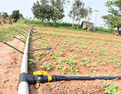Spray Irrigation Kit 1/4 Acre
