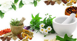 Herbal Products, Box
