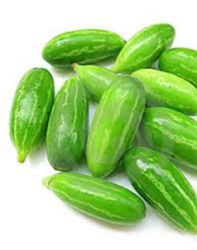 Fresh Ivy Gourd (Kovakkai)