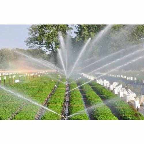Nursery Irrigation System
