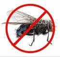 Flies Pest Control Service