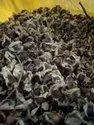 Moringa Seeds ODC Quality