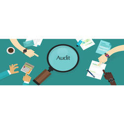Individual Consultant Corporate Account Auditing Services